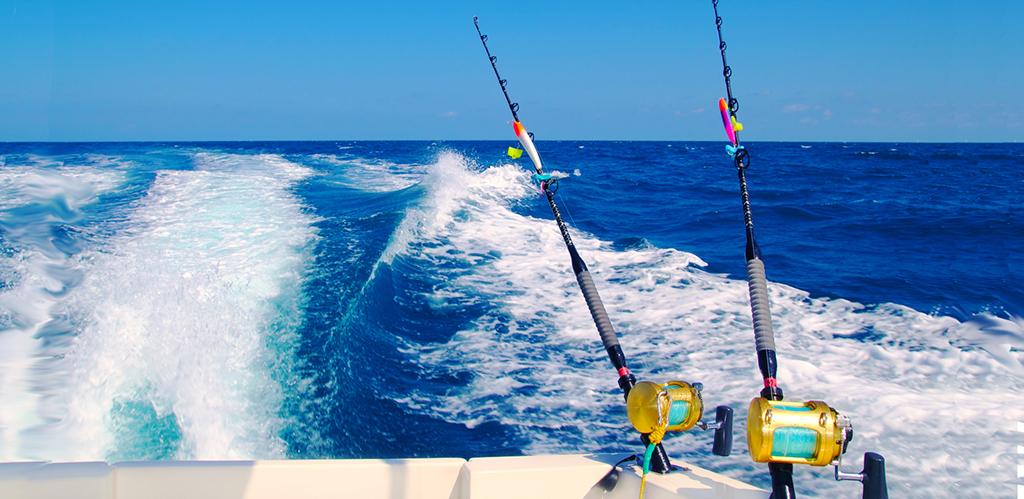 морская рыбалка слодке смотреть видио Образование врач